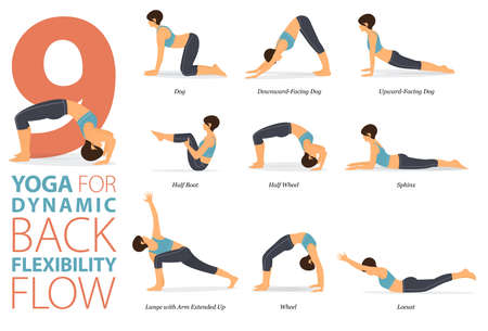9 Yoga poses or asana posture for workout in back flexibility concept. Women exercising for body stretching with yoga chair. Fitness infographic. Flat cartoon vector