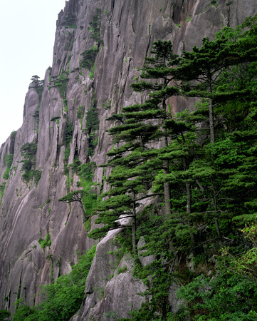 Chinese Mountain Cliffs With Trees In The Foreground
