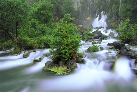 River Water Overflows Its Banks In An Oregonian Forest During The Spring Runoff LANG_EVOIMAGES