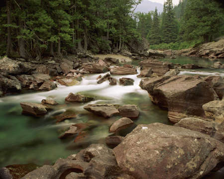 A Running Stream Flows Past Many Rocks In A Green Forest In North America LANG_EVOIMAGES