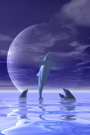 cetaceans: Dolphins LANG_EVOIMAGES