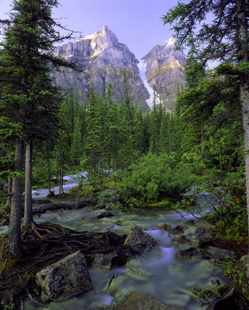 A Vertical Photo Of Mountains And A Stream In A Lush North American Forest