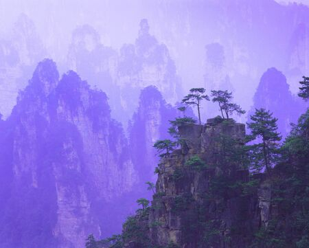 gentle dream vacation: A Vertical Purple Ethereal Mountain Range In China With A Treetopped Mountain In The Foreground