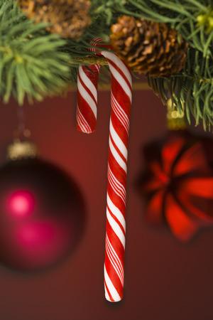 guirnaldas de navidad: Close-Up Of A Candy Cane And Christmas Ornaments