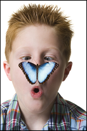 nose close up: Close-Up Of A Boy Looking At A Butterfly On His Nose