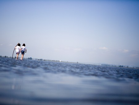 Rear View Of Two People Wading In Water
