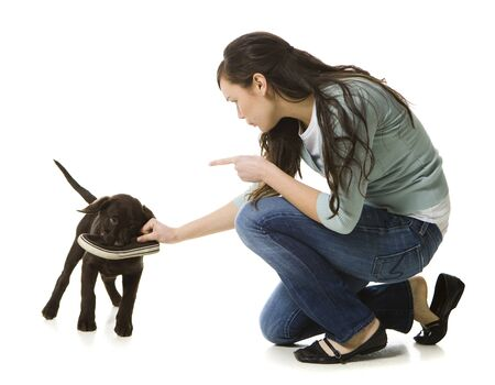 Young Woman With A Brown Puppy LANG_EVOIMAGES