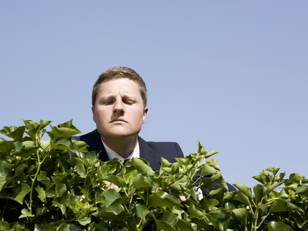 Man Looking Over A Hedge LANG_EVOIMAGES