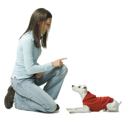 Casually Dressed Woman Training In Hoodie Dog To Sit