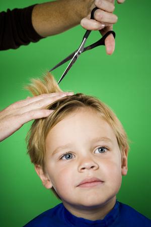 Boy Having His Hair Cut
