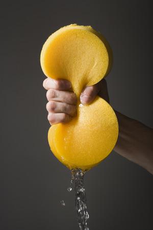 Hand Wringing A Sponge