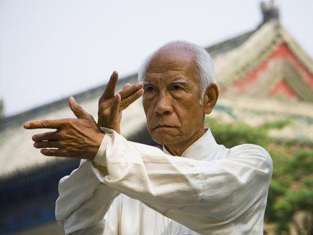 Man Doing Kung Fu Outdoors LANG_EVOIMAGES