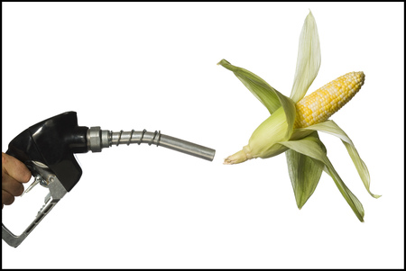 Man Holding Gas Nozzle With Corn Cob