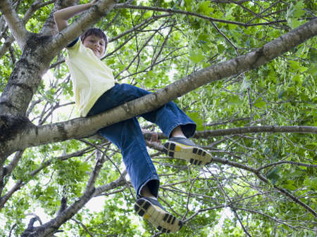 Low Angle View Of A Boy Sitting On The Branch Of A Tree