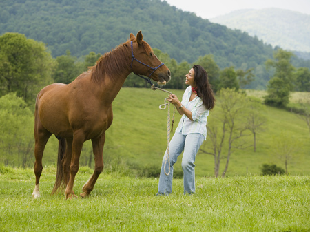 Woman Holding The Reins Of A Horse LANG_EVOIMAGES