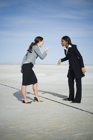 Profile Of Two Businesswomen Arguing