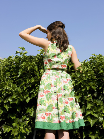 Woman Looking Over A Hedge