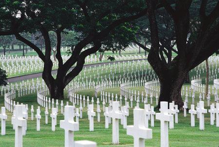 Crosses In Flanders Field