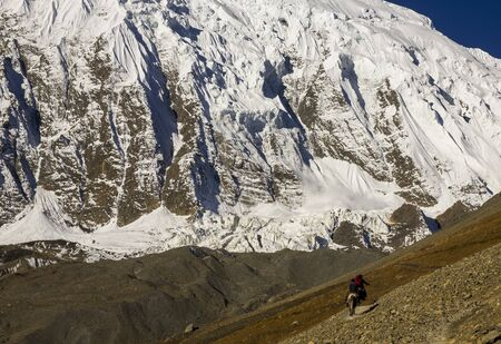 free man rides horse along a path in the annapurnas of nepal with a stunning snowy mountain in the background