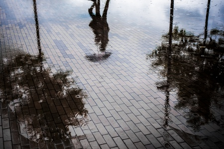 heavy rain: Couple with umbrella walking in reflection of flooded street after heavy rain