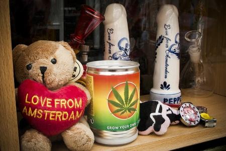 pene: Amore olandese Amsterdam orso souvenir in piedi nella finestra di shopping con il pene e lo stagno con l'erbaccia Editoriali