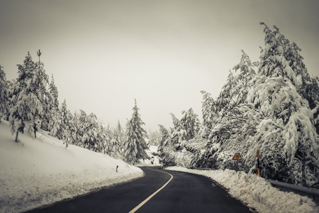Road in the middle of the snow