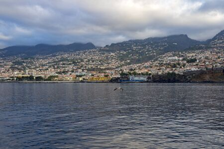 Funchal View, Madeira