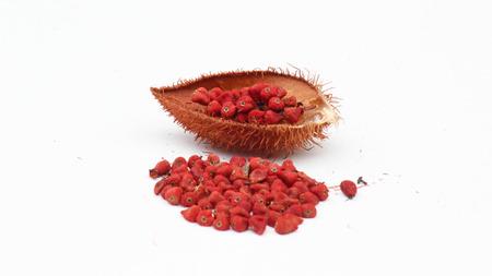 Annatto tree (Bixa orellana L.) medicinal properties of the drug.