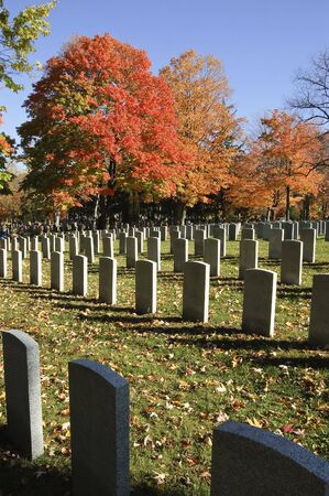 national military cemetery: Rows of soldier tombstones on grassy field sprinkled with leaves with red maple trees in background contrasting against blue fall skies