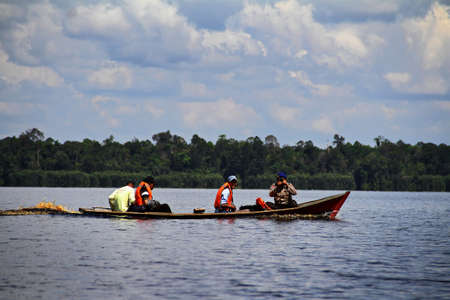 exploratory: They are eksploring the lake of Zamrud in Siak, Province Riau, Indonesia. Lake of Zamrud is  swamp forest in Indonesia.