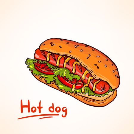 Tasty and colorful hand drawn vector illustration of hot dog. Fast food. Illustration
