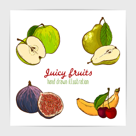 Vector set of hand drawn colorful ripe and juicy fruits. Green apple, banana, pear, cherry and fig. Illustration