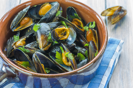 wine sauce: Mussels cooked in white wine sauce Stock Photo