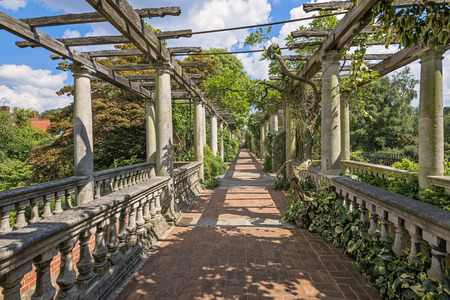 entrance arbor: Pergola in summer park