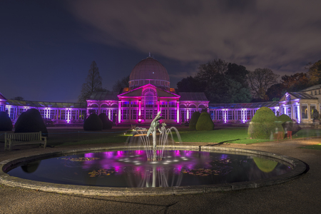 conservatory: LONDON - NOVEMBER 22nd 2015: Glass conservatory in Syon Park, London illuminated by laser lights at night