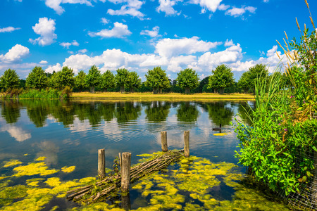 south london: The Long Water Canal in Hampton Court Park in South London, UK Stock Photo