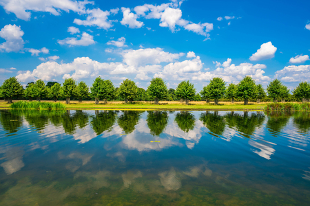 The Long Water Canal in Hampton Court Park in South London, UK 写真素材