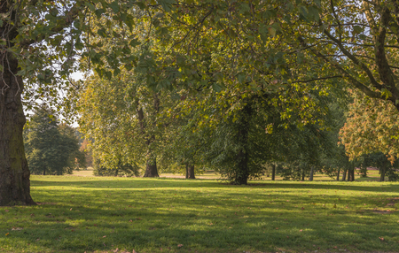 hyde: Hyde Park in the autumn, London UK Stock Photo