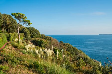 View of coast and sea in Torquay, South Devon, UK Stock Photo