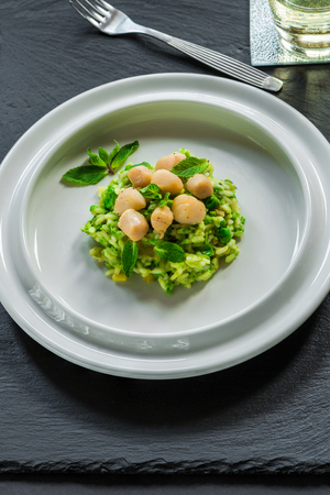 Scallops on minted pea risotto garnished with fresh mint