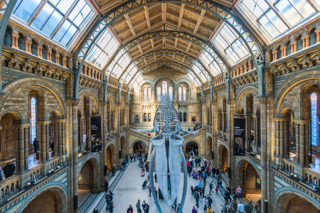 LONDON FEBRUARY 26, 2018: Tourists visit Natural History Museum. One of the most visited attractions in London, it has  five main collections: botany, entomology, mineralogy, paleontology and zoology Éditoriale