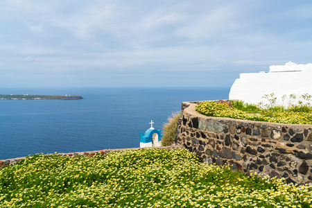View of wild flowers and Aegean Sea in Oia, Santorini, Greece