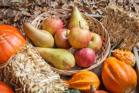 harvest cone cornucopia: Pumpkins, apples, pears, tomatoes and straw on a wooden plate.