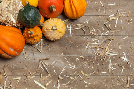 Pumpkins, apples, pears, tomatoes and straw on a wooden plate. photo