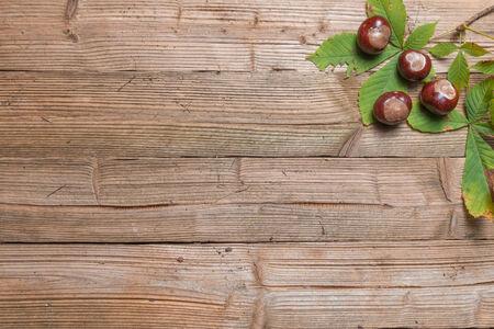 일부 나뭇잎 갈색 나무 테이블에 밤.