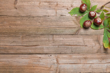 Chestnuts on a brown wooden table with some leaves. Stock Photo - 32509101