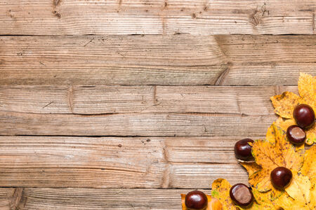 forest wood: Yellow leaves on a borwn wooden table in autumn. Stock Photo