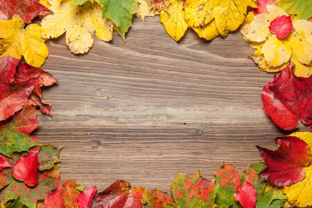 Coloful autumn leaves on a wooden table. photo