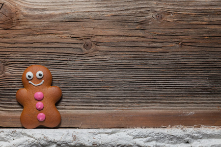 Gingerbread man and reindeer in front of their christmas tree photo