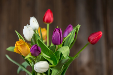 Colorful tulips in a vase on a wooden table photo